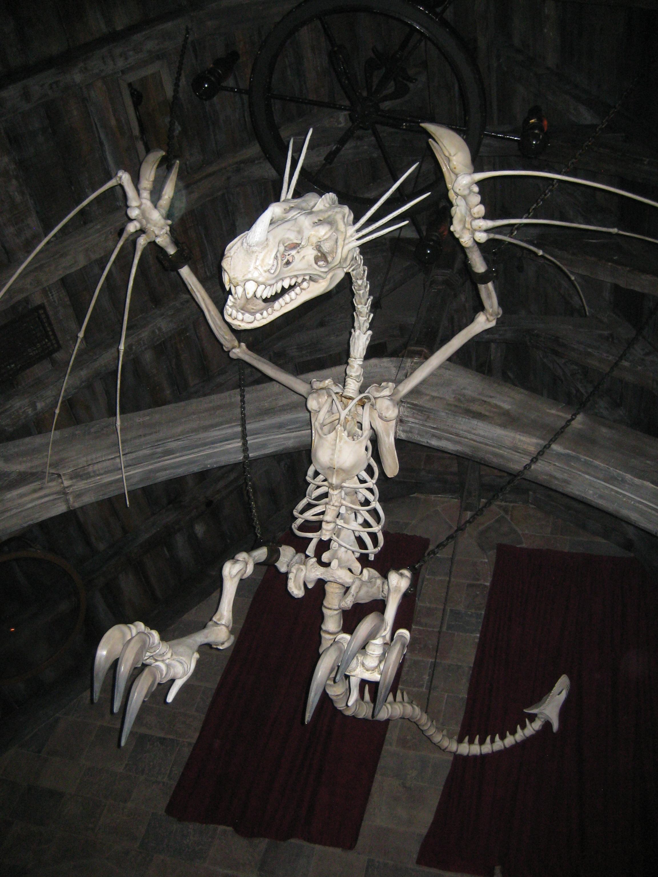 Bones of a Thestral